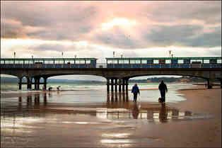 BEACH PASTIMES by Mick Butler.jpg