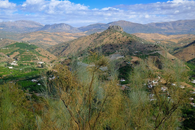 VIEW FROM COMARES by Chris Reynolds.jpg