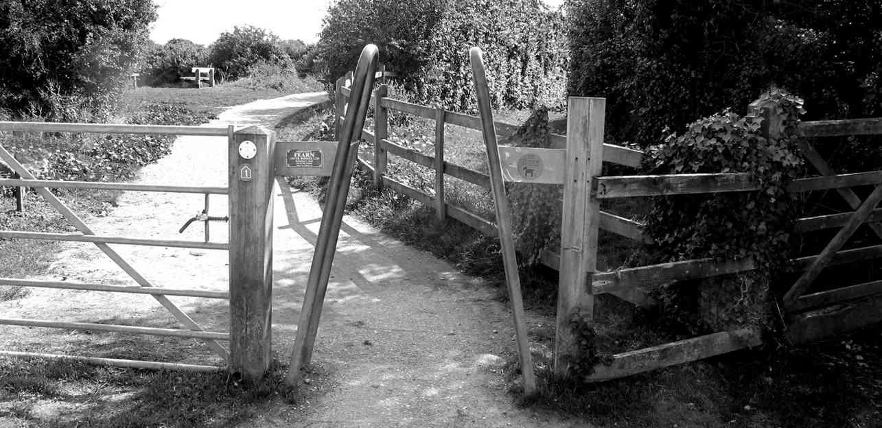 Gates_06 by Terry Mahoney.jpg
