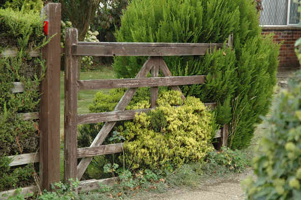 Gates_11 by Terry Ravell.jpg