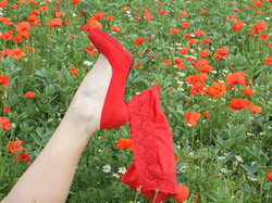 NAUGHTY IN THE POPPIES by kim read