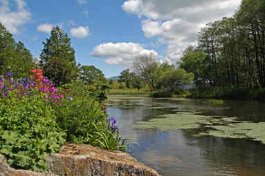 BOTANICAL GARDENS OF WALES by reg holmes