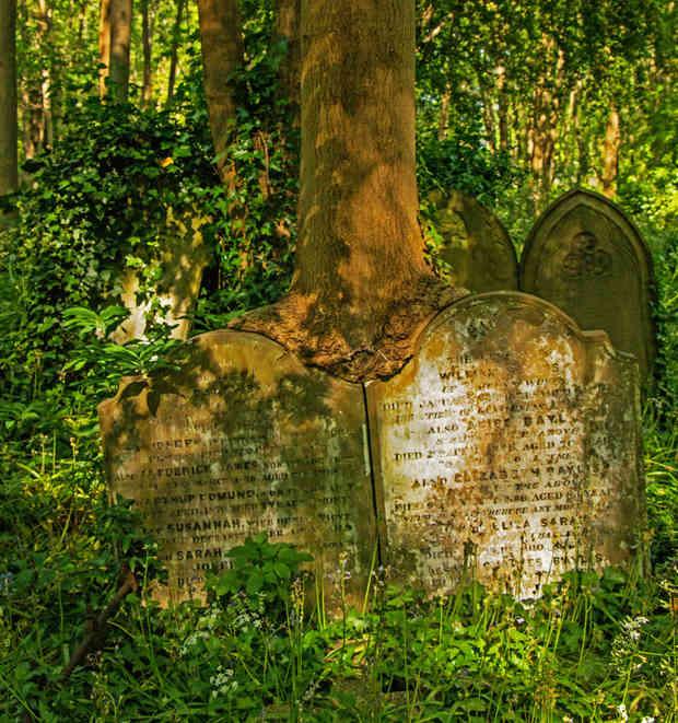 Tombstone_07 by Richard Peters.jpg