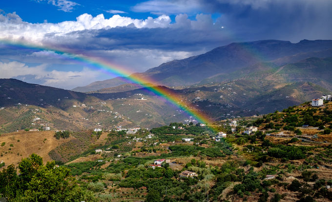 ABOVE THE RAINBOW by Chris Reynolds