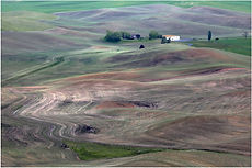 FARM IN THE ROLLING PLAINS PALOUSE by Ro