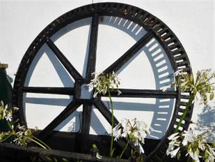 Wagon Wheel Retired.jpg