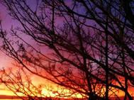 Skies 14.jpg