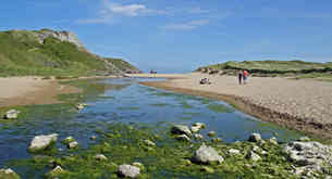 WALK ON THE BEACH by reg holmes PRINT CO