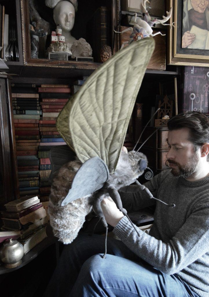 Mister Finch working on a textile moth