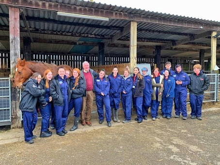 The Yorkshire Vet visits Wigfield Farm