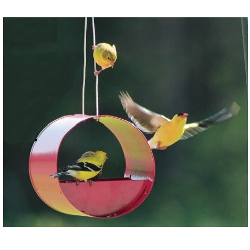 Cylindrical Bird Feeder