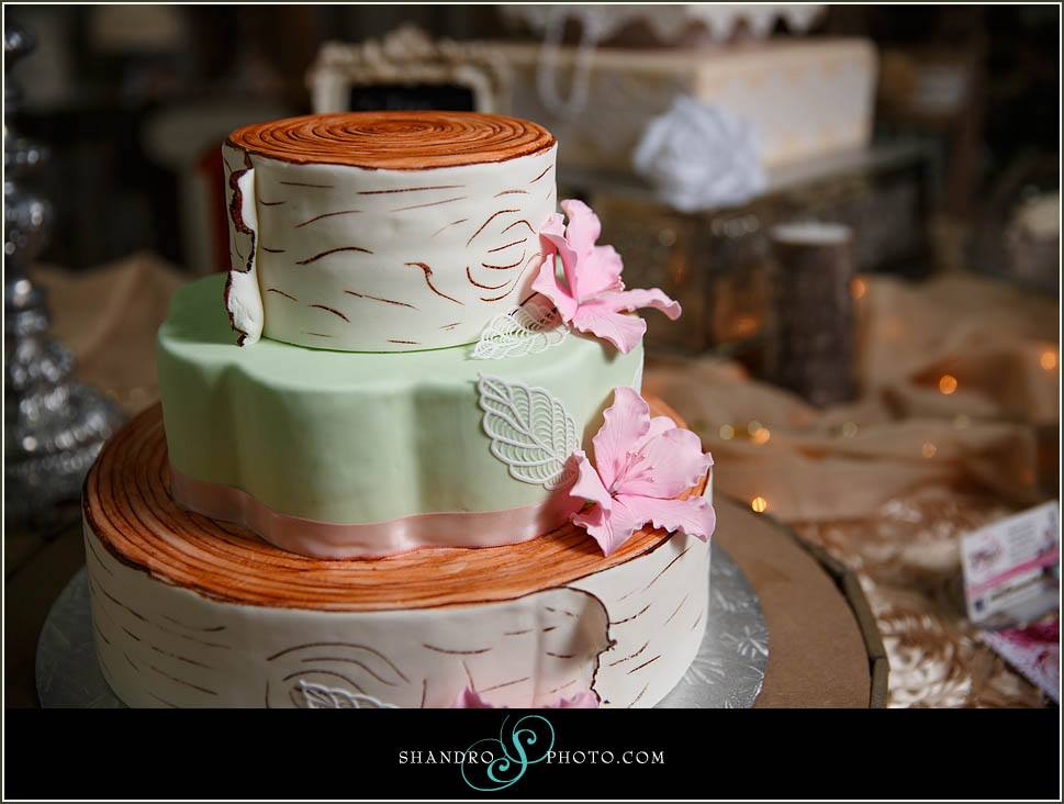 Teresas Custom Cakes Edmonton Cake Decorator