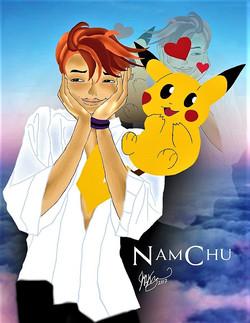 NamChu 2017