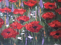Poppy Fields4