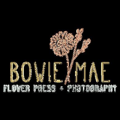 BowieMae Main 1.png