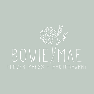 Bowie Mae Main White.png