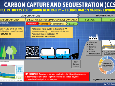 Multiple Pathways To Carbon Neutrality