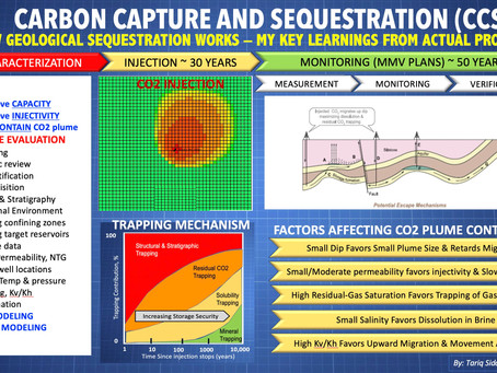 Geological Sequestration of CO2: Learnings From Field Project