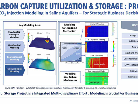 CO2 Injection Modeling in Saline Aquifers: Strategic Business Decisions - Successful Storage Project