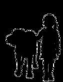 chien-visiteur-enfants.png
