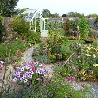 A path to the greenhouse