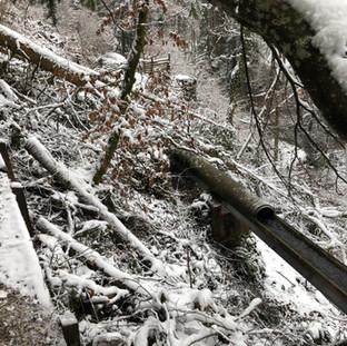 Winter 2021 - Das Aquädukt bleibt unversehrt