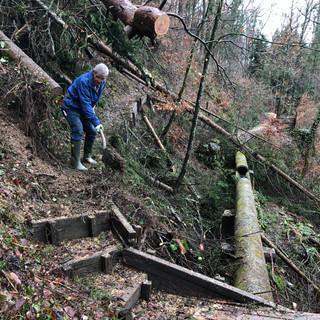 Winter 2021 - Erste Wegreparatur nach Baumschlag