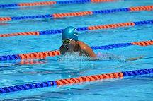 swimming-1706052__340.jpg