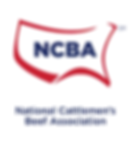 NCBA Logo.png
