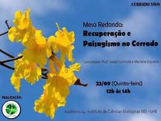 2016-09-22_Mesa redonda Cerrado Vivo.jpg