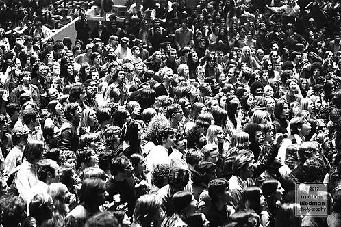 343 Rolling Stones Concert, Madison Square Garden 1969