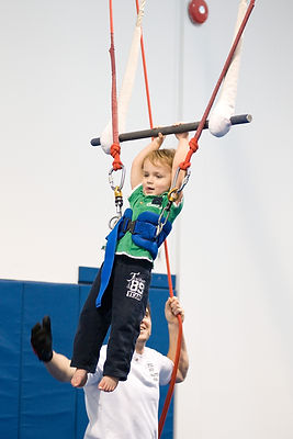 aerial trapeze, circus,gymnastics birthday party