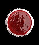 Raspberry Jam.png