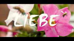 liebe1