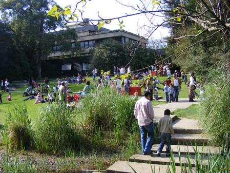 Festa Desenho e Paisagem 2009