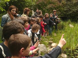 Biodiversidade no Jardim – a fauna e a flora
