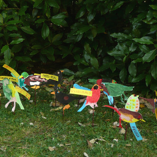 Multiplicador de aves