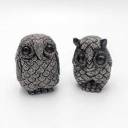 Owl Egg shell