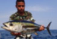 tuna thon atun fishing © Copyright Pesca Colombia 2018