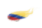 fly fishing flag colombia © Copyright Pesca Colombia 2018