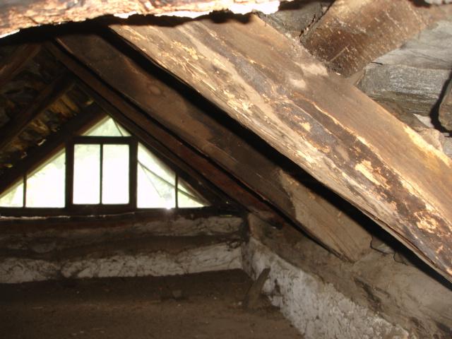 Risanamento tetto a Intragna (2)