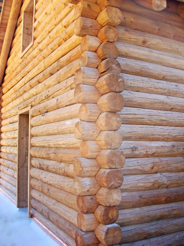 Casa in legno a Bosco Gurin