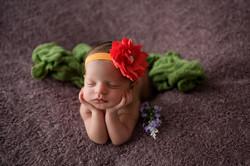 Ensaio de bebê RJ