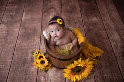 Ensaio de acompanhamento do bebe rj