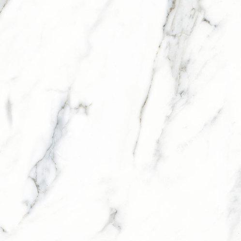 "Carrara Elite Polished 24"" x 24"""