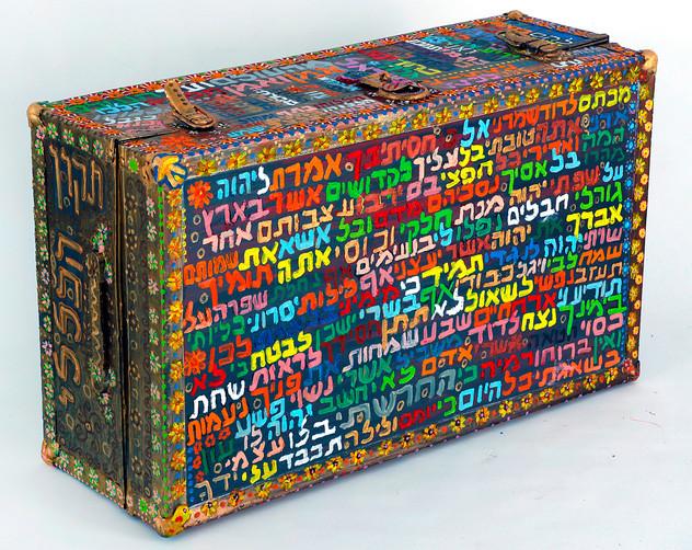 Braslev's General Tikun (side), 2010, oil on suitcase, 58x92x32 cm 2.jpg