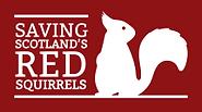 Saving Scotland's Red Squirrels