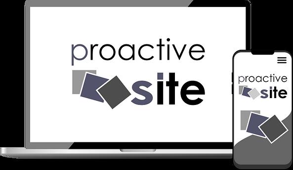 SCHEMA PROACTIVESITE PC.png