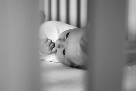 Baby Shep (3).jpg