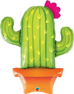 Cactus 10€